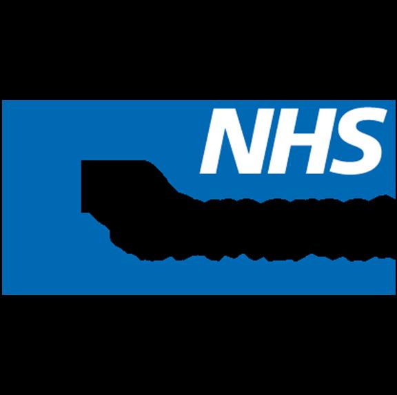 Somerset NHS Logo